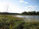 Rustic Lake